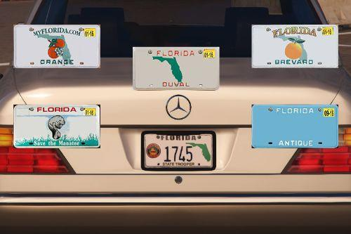 Bb06f0 florida license plate pack