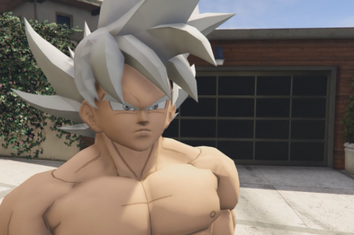 Goku - Mastered Ultra Instinct (Dragon Ball Super)