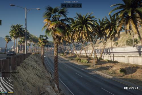 Grand Theft Auto Palms  (GTA Remastered) (Add-On)