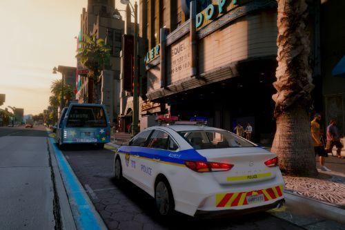 Hyundai Sonata Korea police