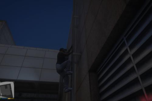 Ladders+