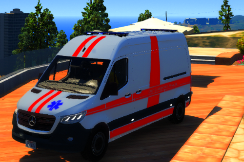 Lithuanian 2019 Mercedes Sprinter Ambulance