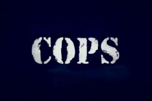 LSPDFR COPS Intro Remake
