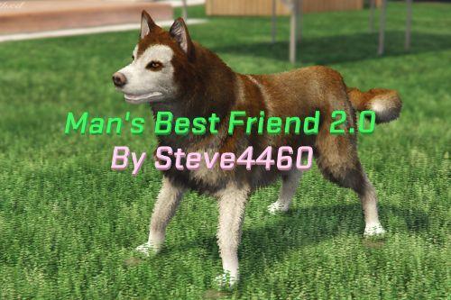 Man's Best Friend HUSKY UPDATE (Dogs as Bodyguards)