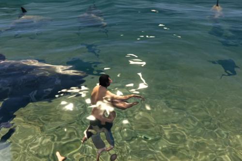 MORE SHARKS + SEA LIFE (FINAL)