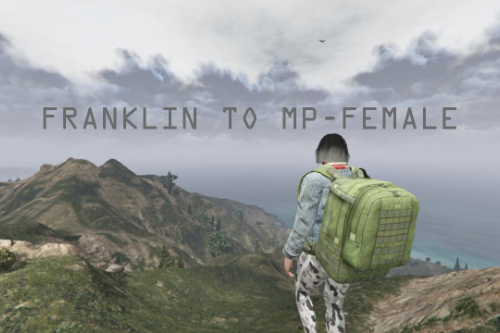 Franklin To MP Female 2020