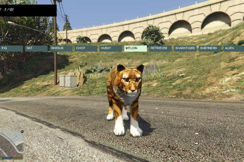 D2bb19 tiger2