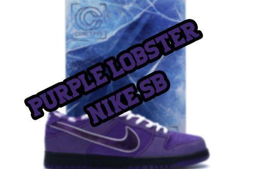 Nike SB Purple Lobster (Pink Laces, White Laces, Black Laces) Franklin