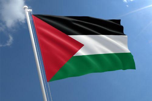 Palestine Flag Retexture