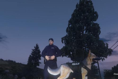 Police Polish dog