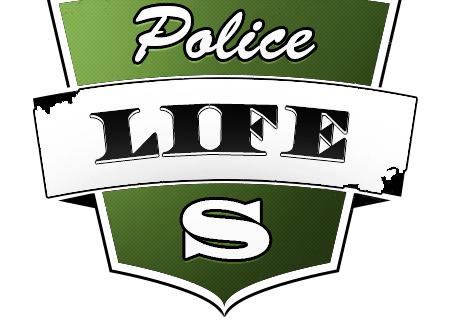 PoliceLifeS [LSPDFR]