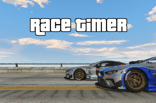 Race Timer