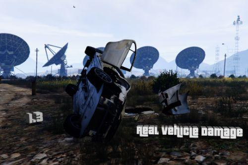 Real Vehicle Damage