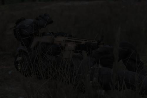 SCAR-H Battle Rifle [Add-On]