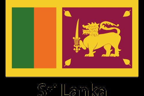 B3fd95 84bcc23719c7da8684adfc33802a1511 sri lanka national flag by vexels