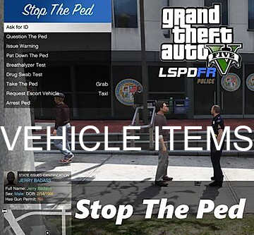 Stop the ped vehicle items modification
