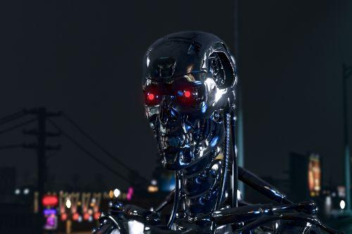 Terminator endoskelet T-800 MK11(Add-On)