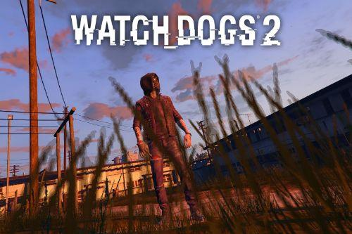 Watch Dogs 2: Wrench [Add-On]