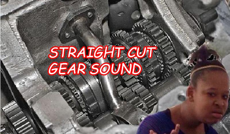 Af74bc straight cut gears thumb  1200x720