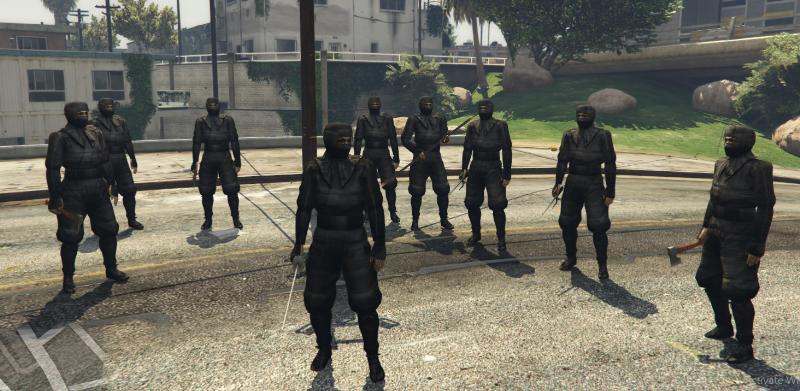 Cc1a5a ninja11