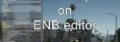 Disable input on ENB editor