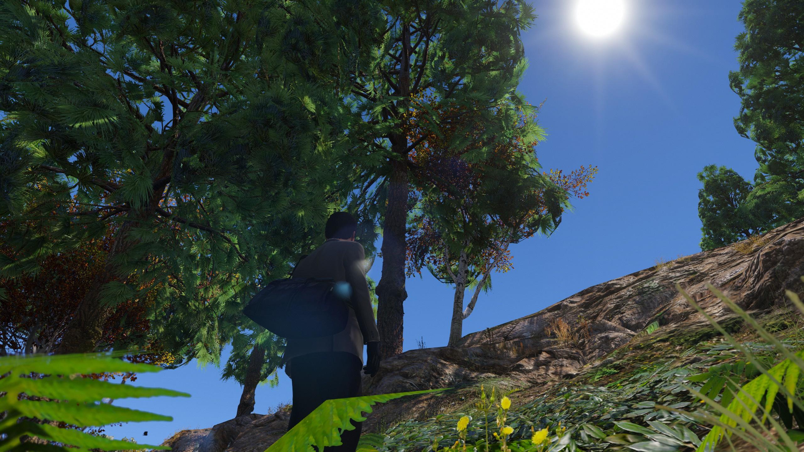 Enhanced 4K Vegetation/Trees Mega Pack
