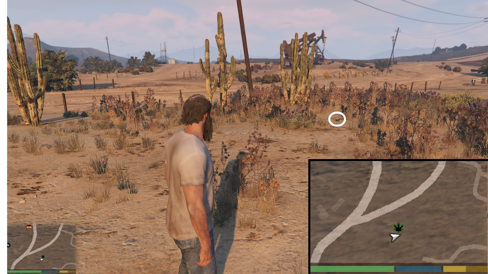 Collectibles on Map - GTA5-Mods com