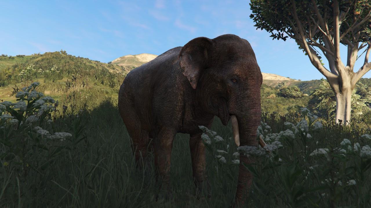 Elephant Gta5 Mods Com