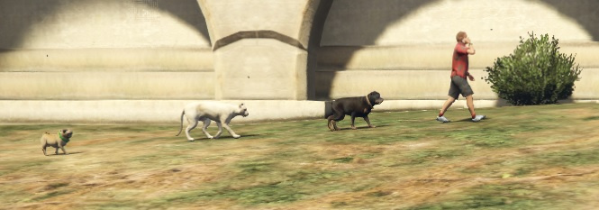 Pet Lovers - GTA5-Mods com
