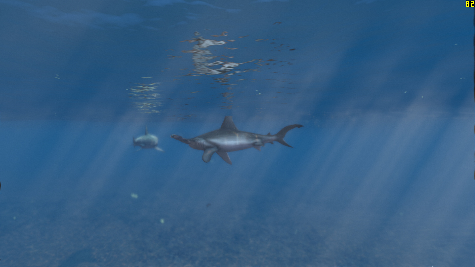 In The Regular Ps3 And Xbox 360 Versions Of Only Sharks Are Modeled After A Hybrid